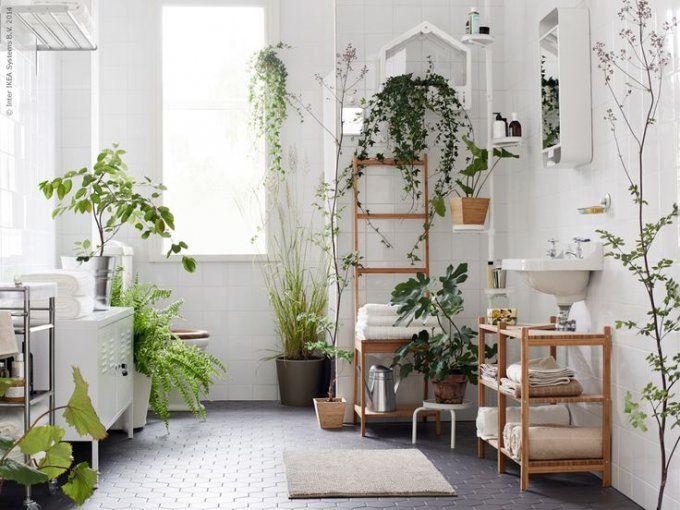 salle-de-bain-foret-tropicale